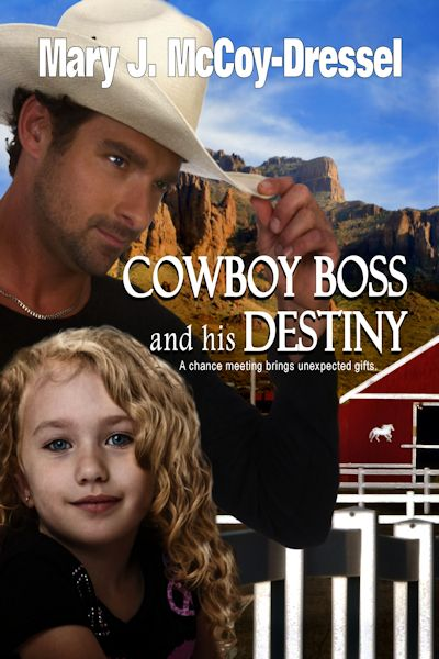 Cowboy Boss and His Destiny Book #1