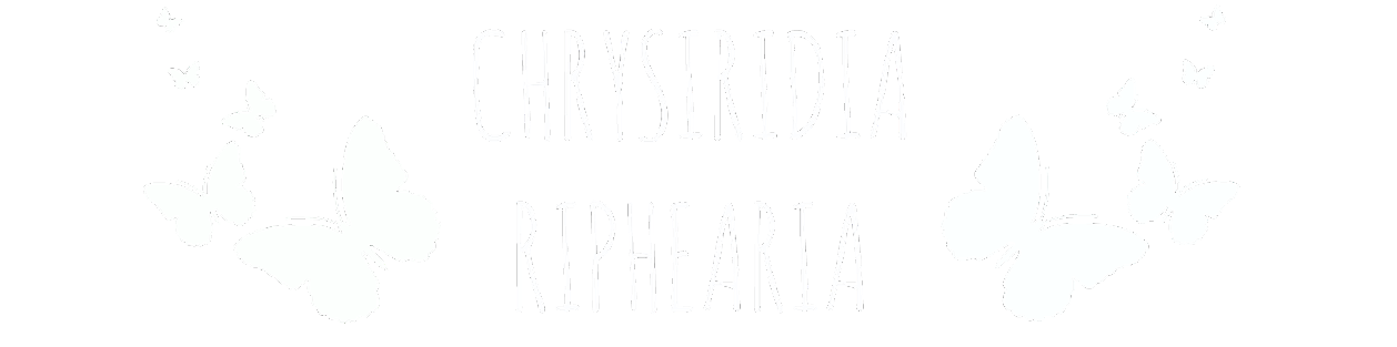 CHRYSIRIDIA RIPHEARIA