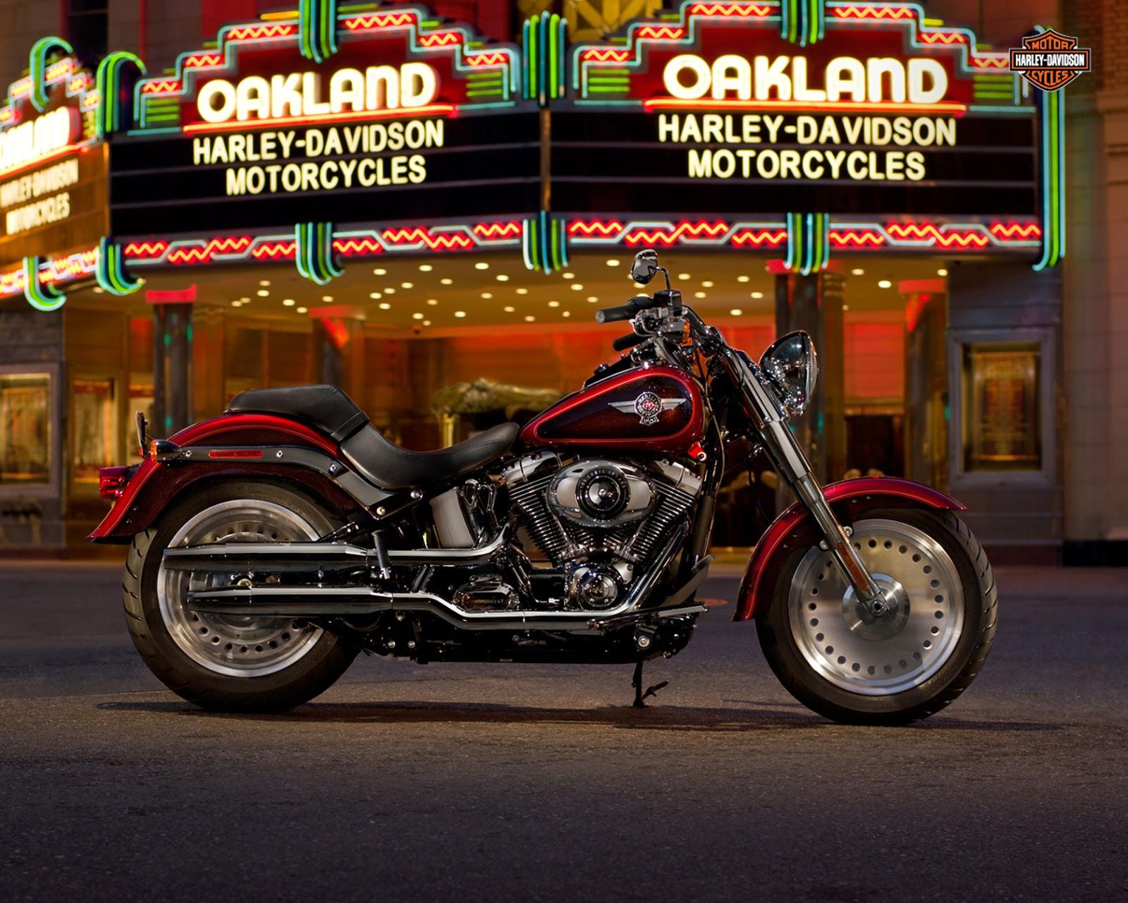 2013 Harley-Davidson FLSTF Fat Boy