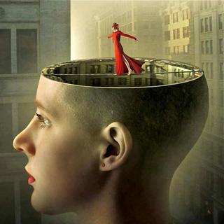 Mai la psicologia potrà dire sulla follia la verità.. perché è la follia che detiene la verità