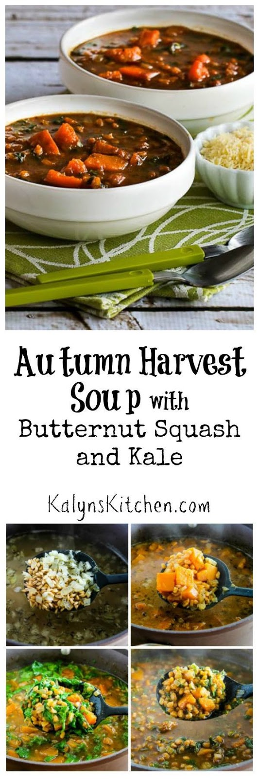 and cilantro kalyn s kitchen want even more recipes i find these ...