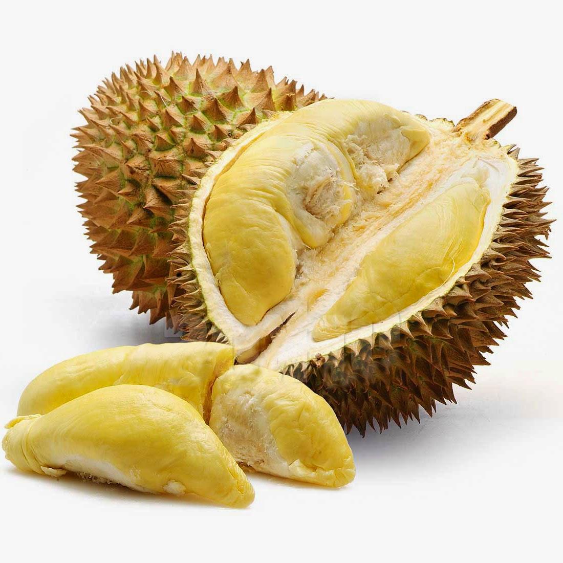 Manfaat Dan Fungsi Durian Untuk Kesehatan