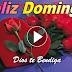 FELIZ DOMINGO - En este día alégrate en el amor, ese amor que Dios nos da, que quita todo temor
