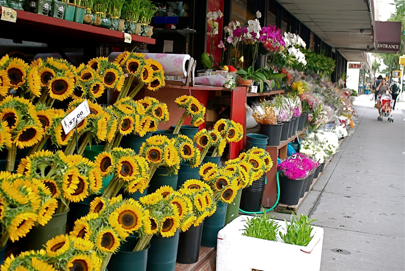NYC ♥ NYC Sunflowers At Grace s Marketplace