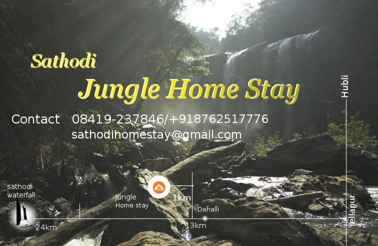 SATHODI JUNGLE    HOME STAY