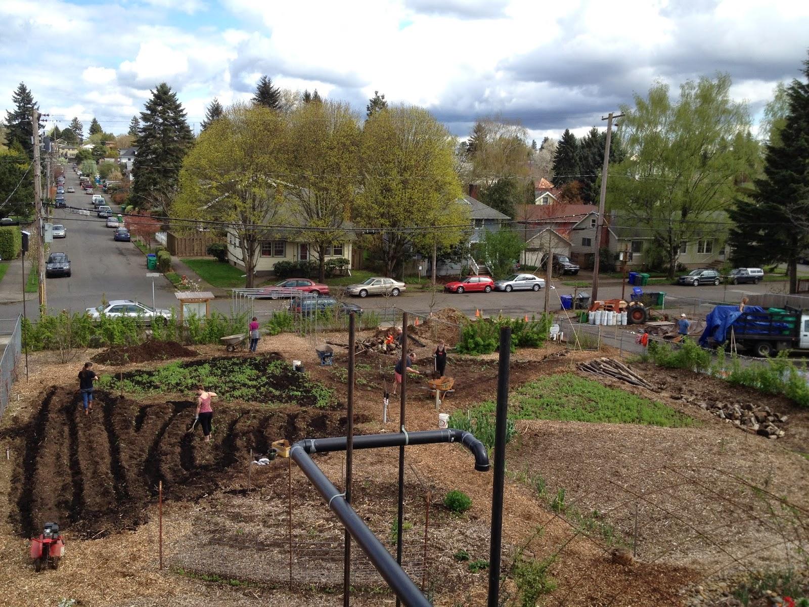 Nature, Nurture, Grow: A Busy Weekend in the Garden