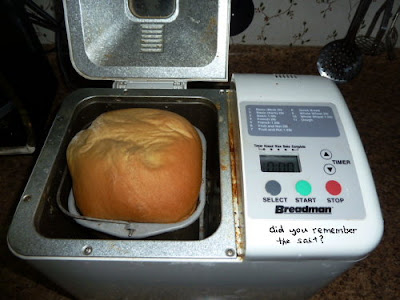 freshly baked bread in breadmaking machine