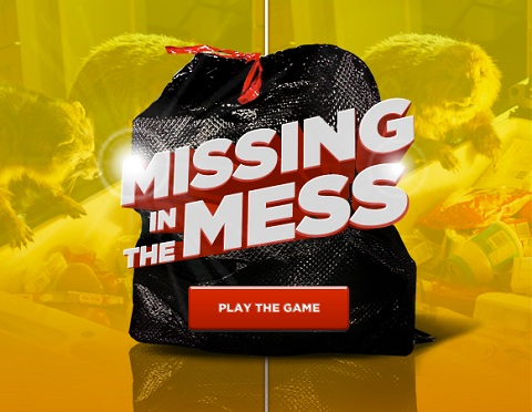 missing in the mess game