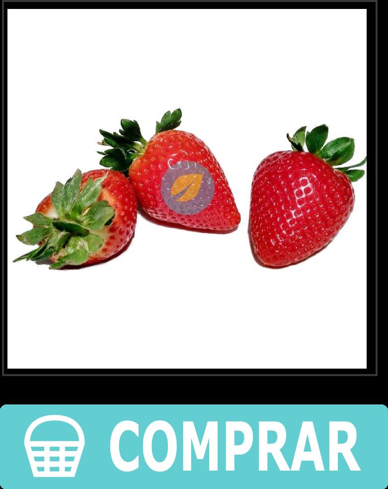 Fresas ecológicas directas a casa