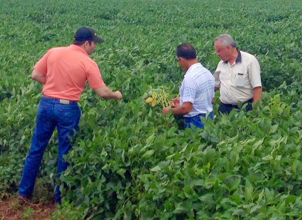 Investidores visitando nossas Fazendas
