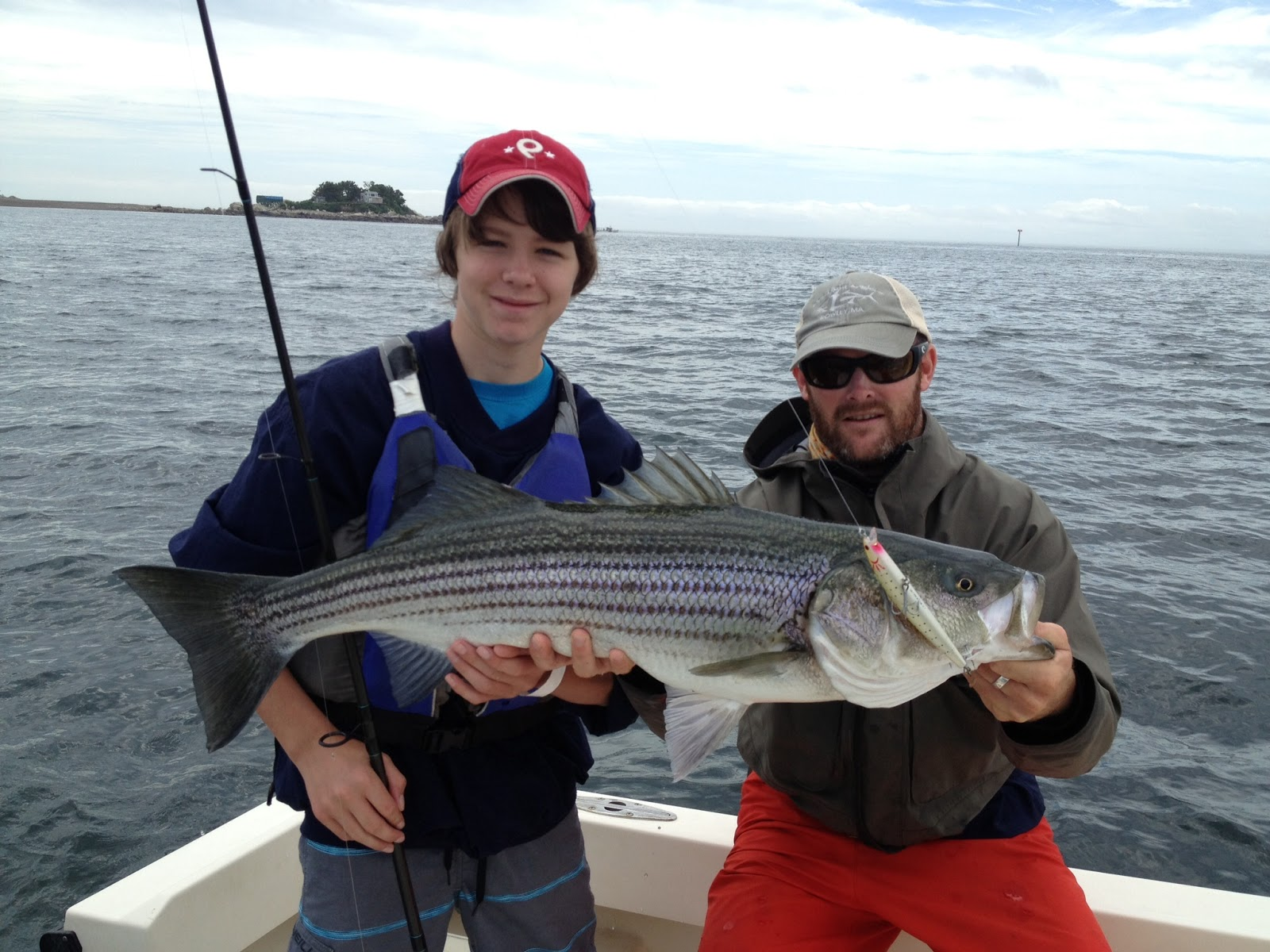 Boston fly fishing and report july stripers from the for South shore fishing report