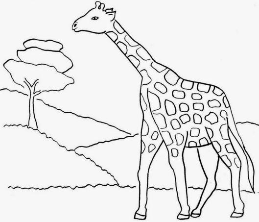 Nah, itulah Contoh Sketsa Gambar Mewarnai Anak TK Terbaru. Sampai