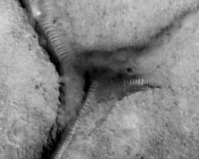 Ventilator ufo
