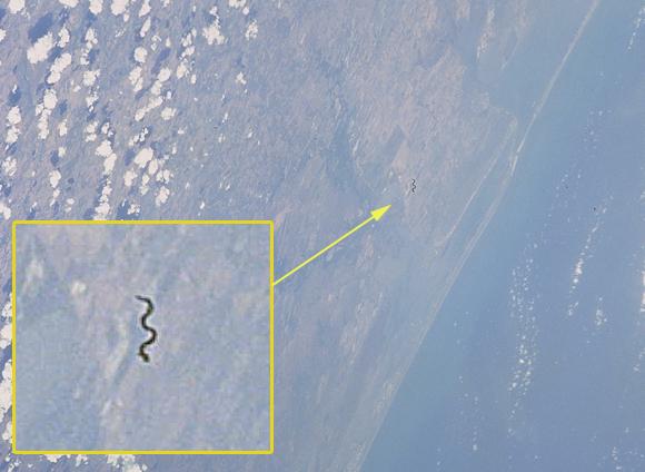 Serpiente voladora en la atmósfera terrestre