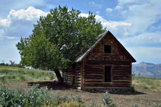 Pioneers: Log Cabin Perfectionists