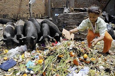 لماذا يحرم الإسلام الخنزير ، مع أنه مخلوق من مخلوقات الله ؟ ولماذا خلق الله الخنزير إذاً ؟