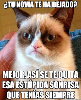Grumpy Cat en español: '¿Tu novia te ha dejado?'