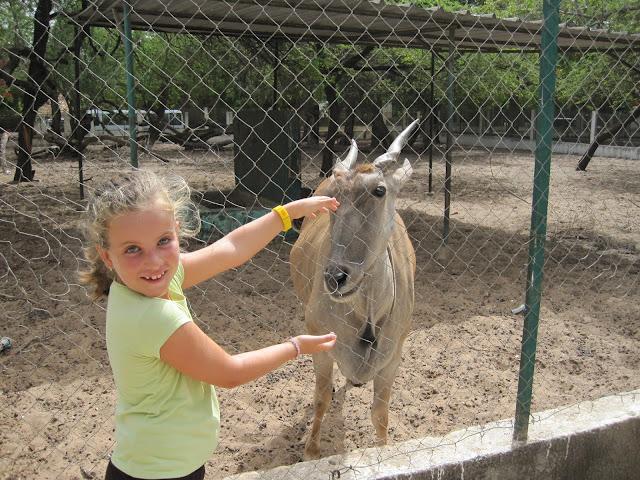 Zoo de Dakar