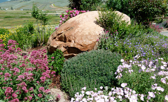 High Altitude Gardening