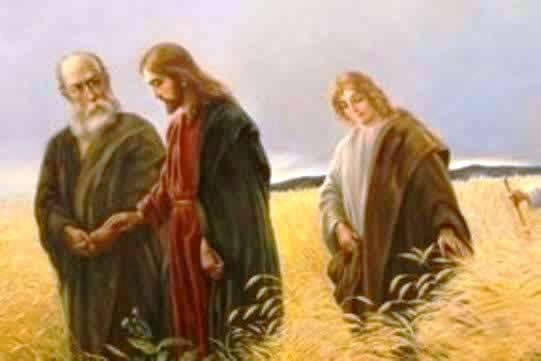 Znalezione obrazy dla zapytania jezus panem szabatu