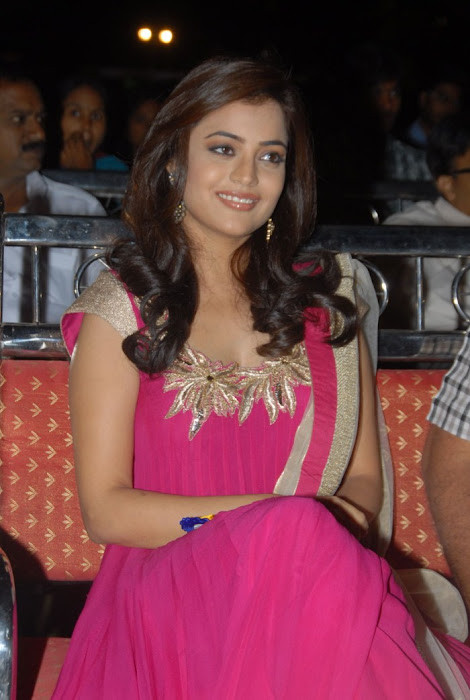 nisha agarwal at solo audio launch, nisha agarwal new hot images