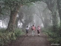 Camino de Santiago -> De Ponferrada a Santiago: ¡Buen Camino!