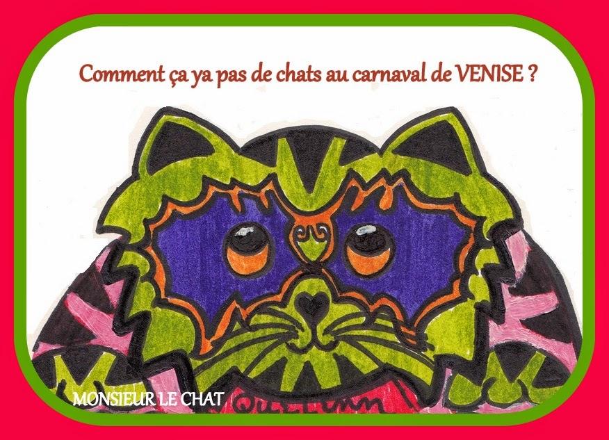 costume de chat de carnaval