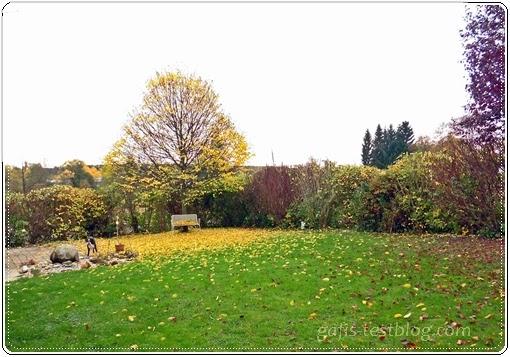 Unser Garten im Oktober