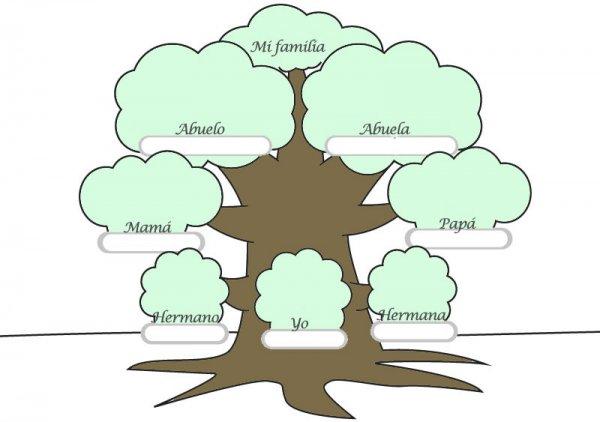 Trabajando el rbol genealgico con los nios  Y de verdad