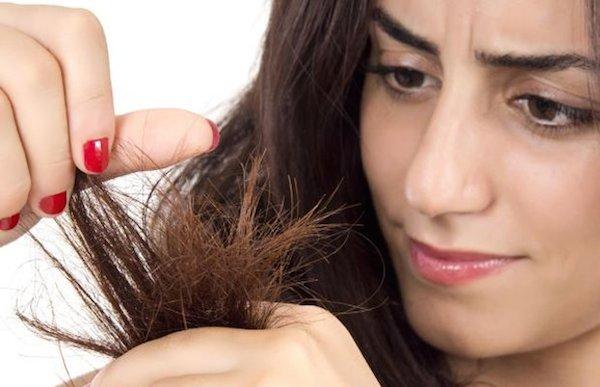Hasil gambar untuk rambut kering rusak