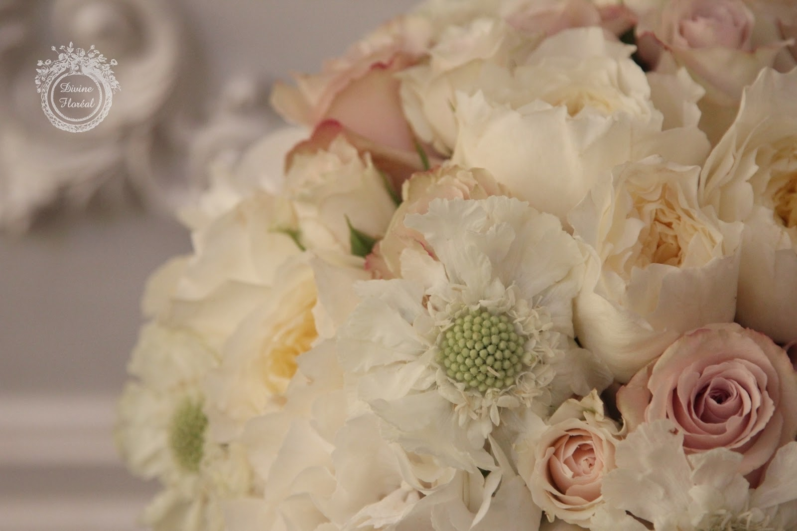 the bouquet consisted of white hydrangea and scabiosa ivory spray rose fragrant david austin patience garden rose and a most gorgeous blush rose - White Patience Garden Rose
