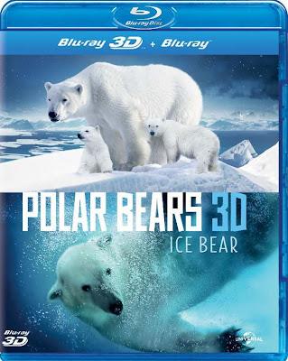 Polar Bears A Summer Odyssey (2012) 720p BRRip 400MB mkv subs español (RESUBIDA)