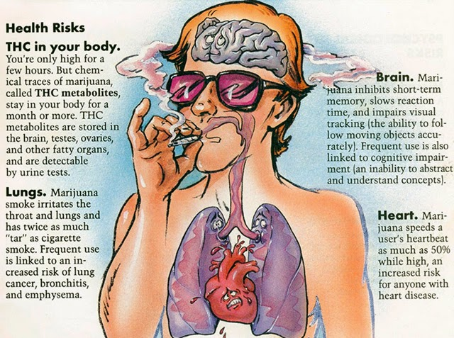 causes and effects of smoking background of study 2017-12-19 this was the result of a study asking more than 500 people to pick the most attractive of twins where one smoked and the other did  'people hypothesise that smoking.