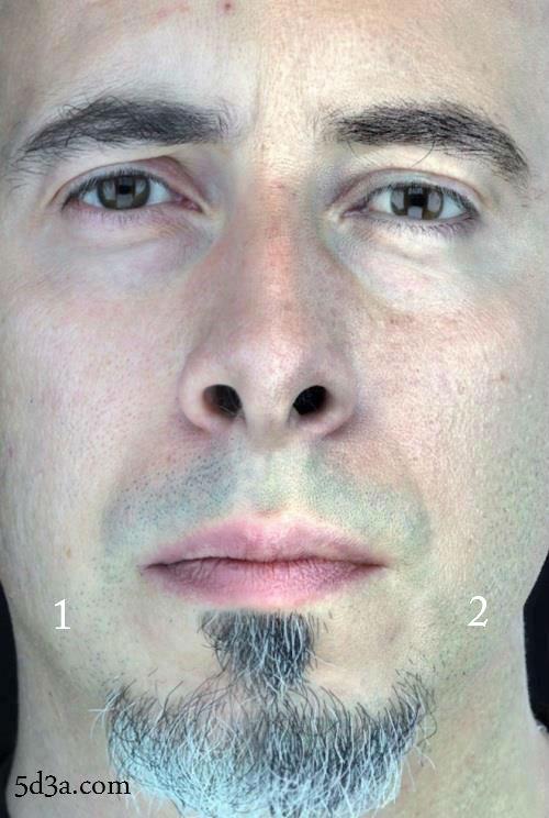 أين نصف الوجه الحقيقي؟ خدع بصرية