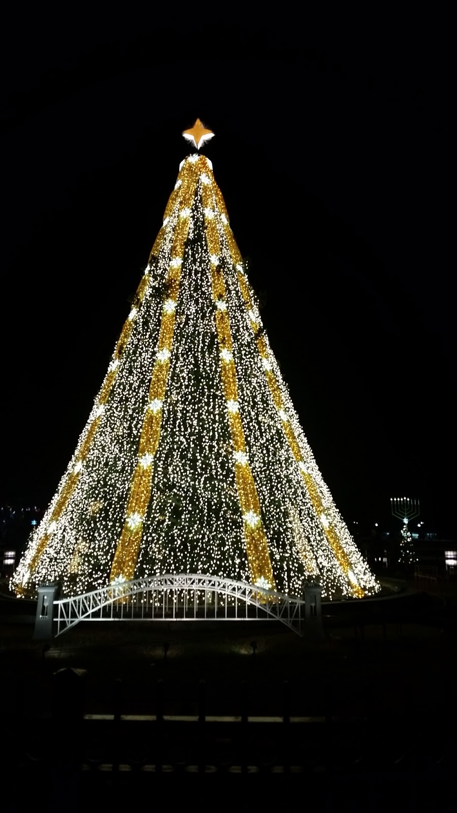 Will Write 4 Travel December 2015 - Visiting The National Christmas Tree