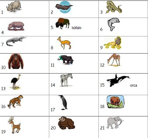Nombres animales omnivoros - Imagui