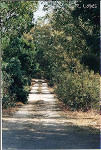 Acesso à Quinta de Santa Inês