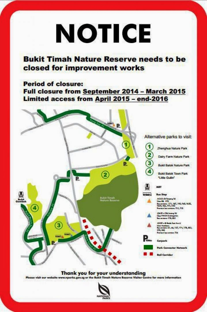 Repair and restoration works at the Bukit Timah Nature Reserve will take place from mid-September this year to end of 2016.