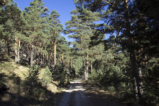 Camino Valle de la Fuenfria
