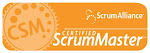 Certified SCRUM Master CSM 2010 (mastery level)