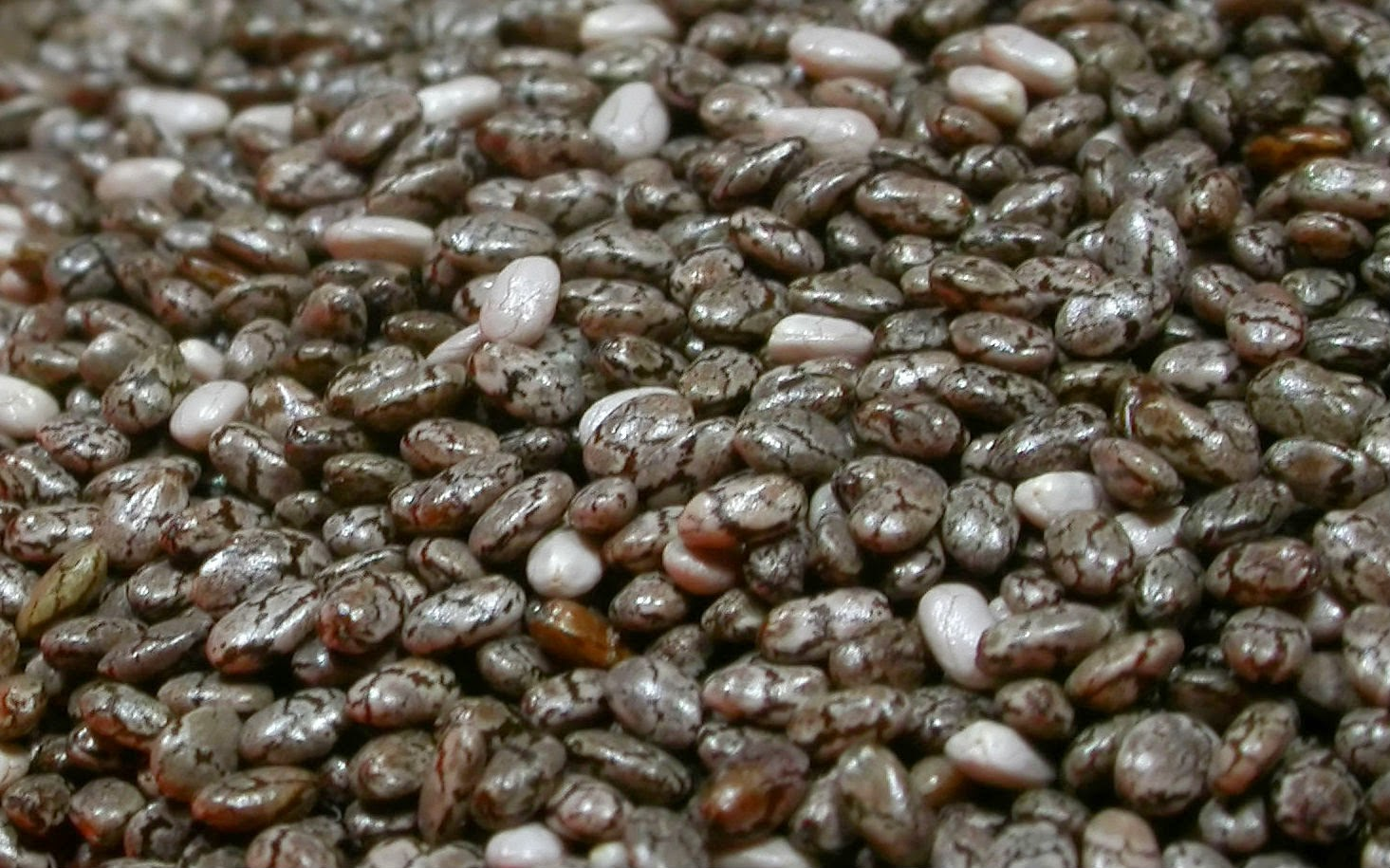 Chia Seeds Whole Foods