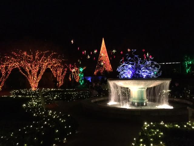 Atlanta botanical gardens christmas lights exhibit with love for Botanical gardens atlanta lights