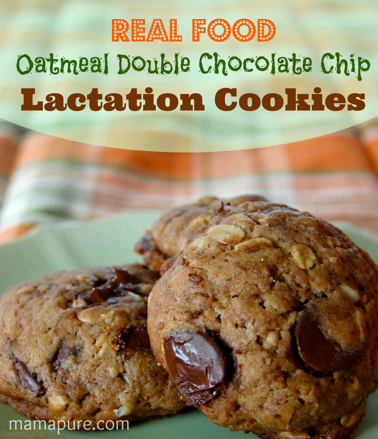 Real Food Oatmeal Double Chocolate Chip #Lactation Cookies ~ #Nursing Moms can make these cookies which are chock-full of ingredients to support milk supply and lead to stress-free #breastfeeding