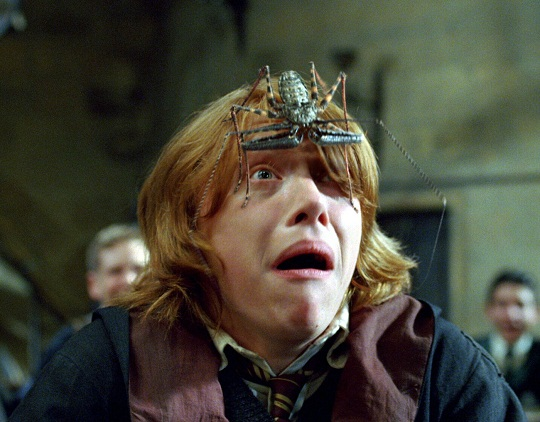 Rupert Grint High Definition Photo