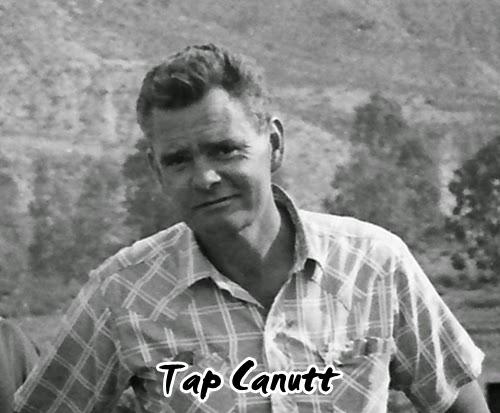 Tap Canutt Net Worth