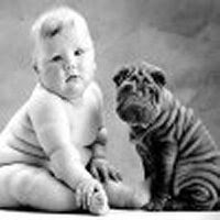 Funny picture: Baby and dog