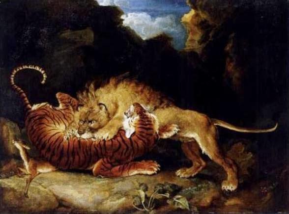 tigre-vs-leao