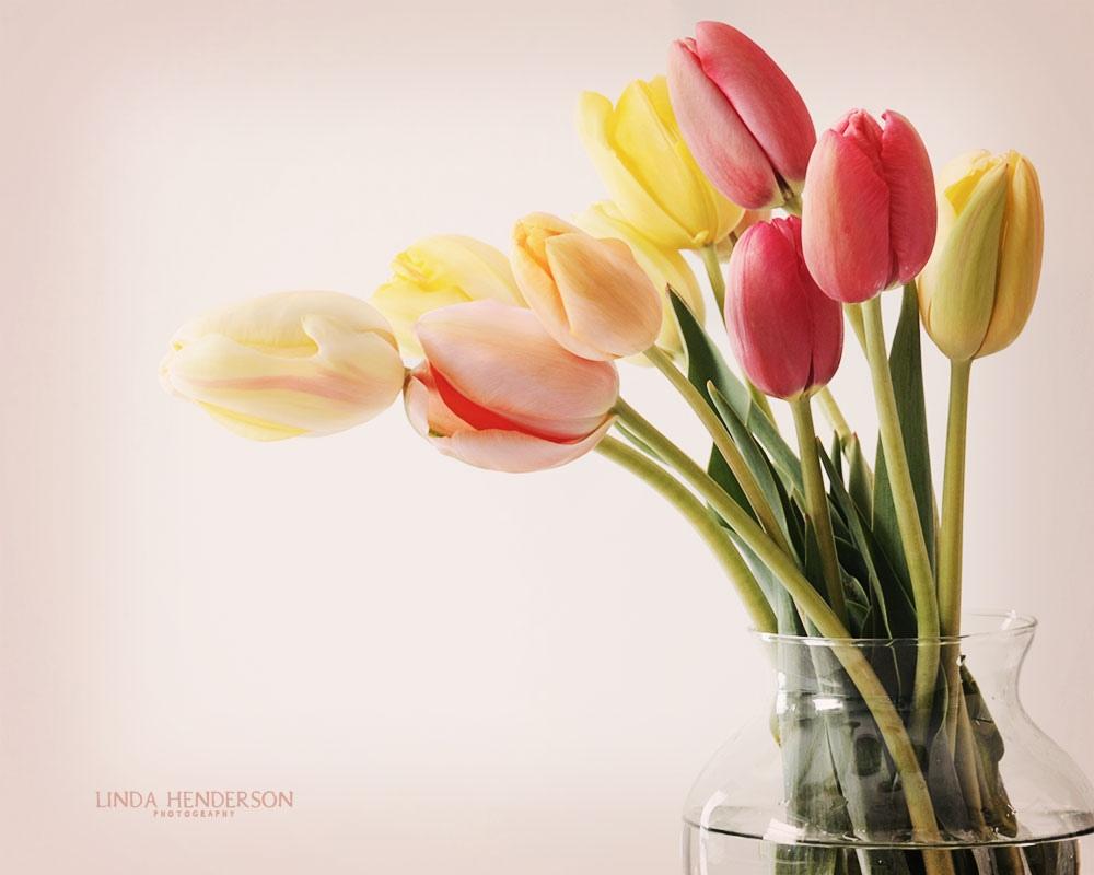 beauty flower: vase of flowers wallpaper