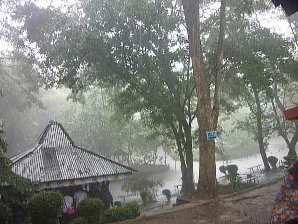 Suasana hujan di kebun binatag bandung