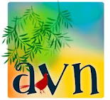 AVN - Opgericht in 1928.
